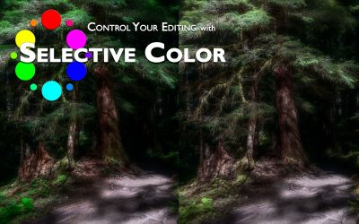 The Power of the Selective Color Adjustment in Photoshop